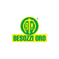 logo-besozzi-oro