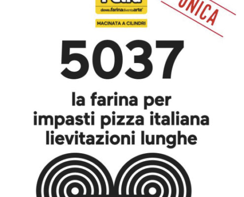 Farina per pizza unica